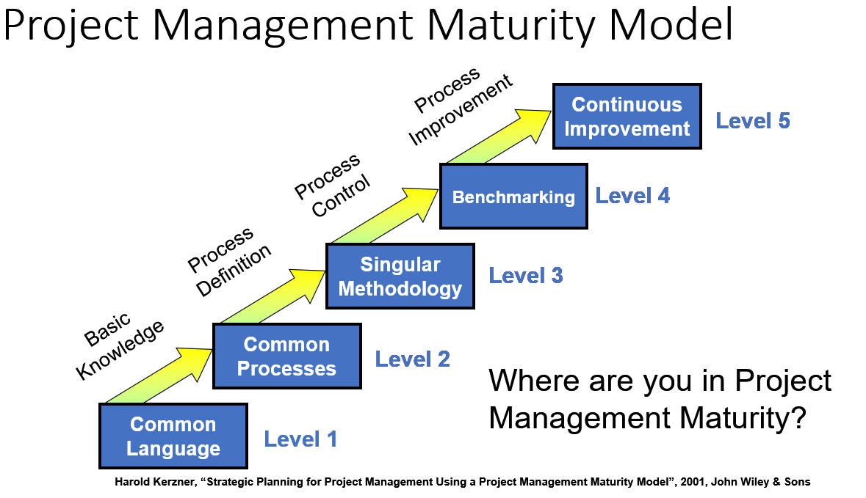 Strategic management maturity model pdf
